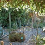 Garden 5Djellabas hotel Marrakech