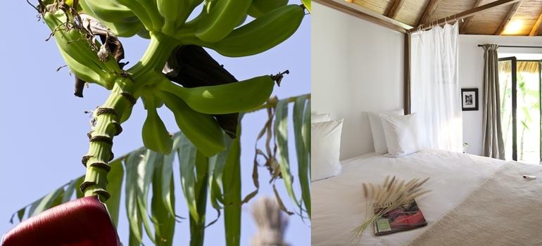 Hotel les 5 Djellabas